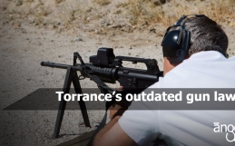 Torrance's outdated gun laws